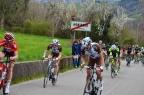 Montaner 06 04 2015 Giro Del Belvedere Il muro di Montaner