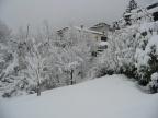 Neve a Montaner Febbraio Marzo 2005